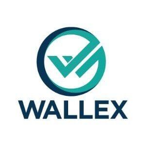 Wallex Global, FX, money, Asia, B2B, Singapore, FinTech
